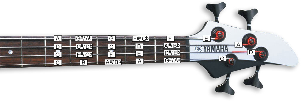 Chords on an electric guitar